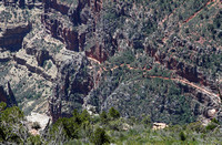 Beginning of North Kaibab Trail