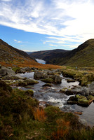 Glenealo River above Glendalough