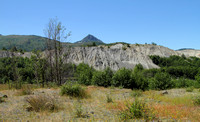 Mt. St. Helens Hummocks (ash and pulverized rock piles)