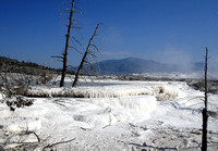 Angel Terrace, Mammoth Hot Springs