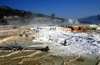 Travertine terraces, Mammoth Hot Spring