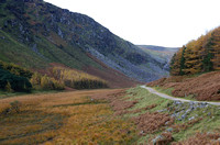 Miner's road above Upper Lake, Glendalough